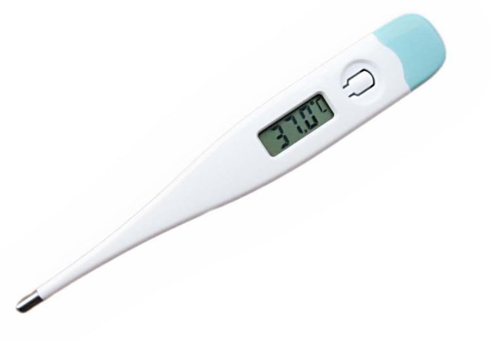 With A Digital Thermometer In Hand