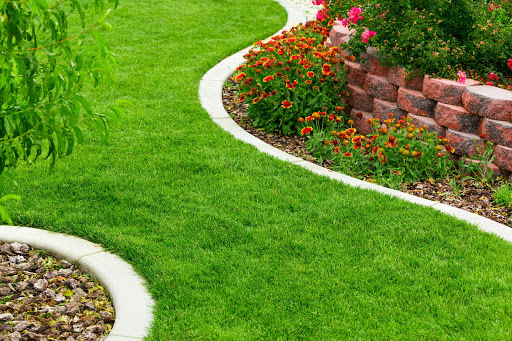 Landscaping Companies Sydney-Benefits You Need To Know About